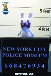 Lapin cretin police