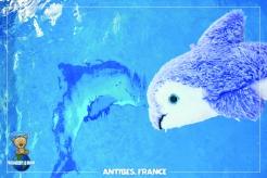 Piti Antibes